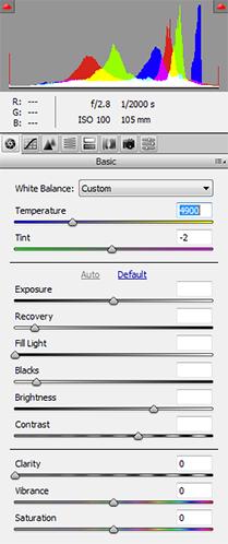 ACR Basic Adjustments Panel