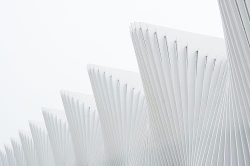 White ribs in a facade against a white sky