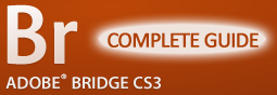 Bridge Guide Complete 255