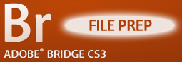 Adobe Bridge: File Preparation