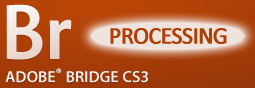 Adobe Bridge: File Processing