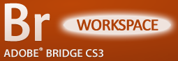 Adobe Bridge: Workspace