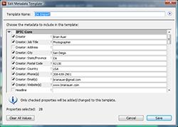 Bridge Metadata Template Dialog 250