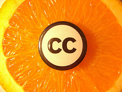CC on Orange on Flickr