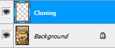 Cloning Layer