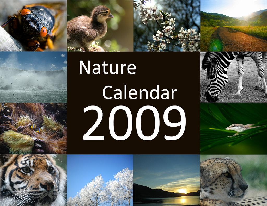 Deviantart Nature Calendar 2009 500