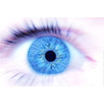Eyeris