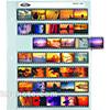 Film Sheet 100