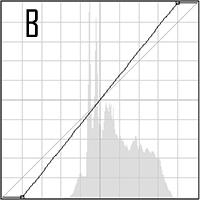 B Curve