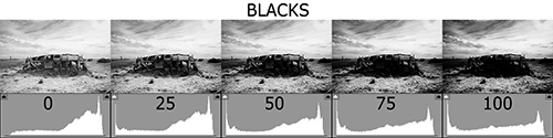 Histogram Blacks 500