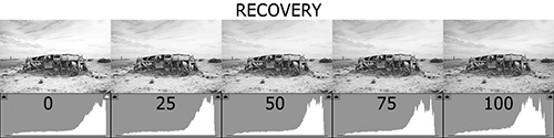 Histogram Recovery 500