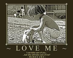 Love Me 240