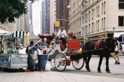 Newyork 250x165