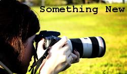 Somthingnew01