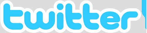 Twitter Logo Outline 500